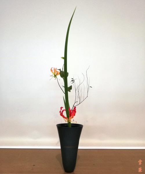 研究会新風体生花グロリオーサ