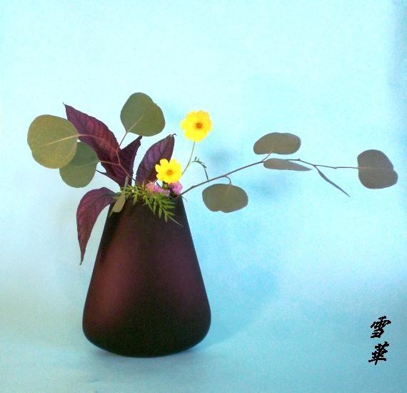 10-9-1黄花コスモス自由花縮小版