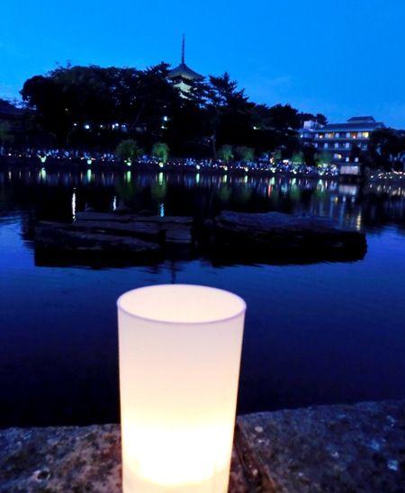 奈良燈花会猿沢池と蝋燭あっぷ縮小版