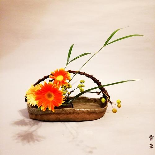 20191002ガーベラ、サンキライ自由花