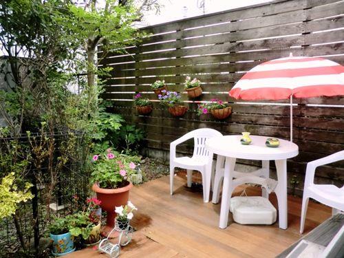 鹿児島うちの庭