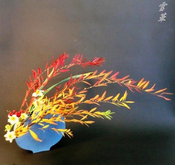 11-11-9雪柳紅葉の自由花縮小版