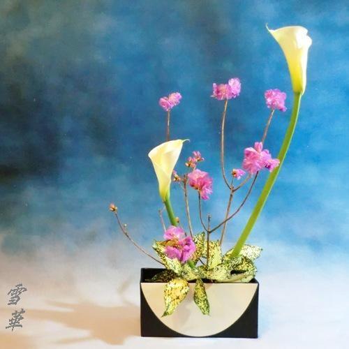 20170215元画像自由花指定花器縮小版