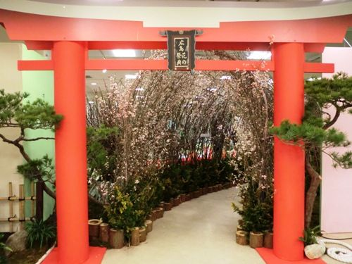 コピー 〜 広島花の祭典14 福屋