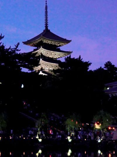 奈良燈花会興福寺五重塔あっぷ縮小版