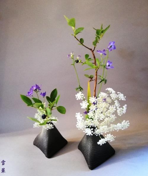 20190704ブルーベリー自由花