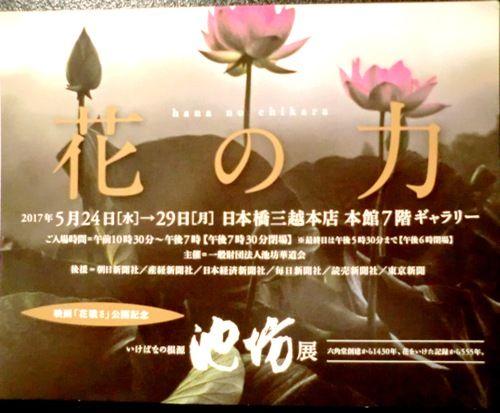 2017東京花展チケット
