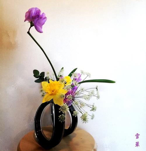 20200212自由花ラッパ水仙