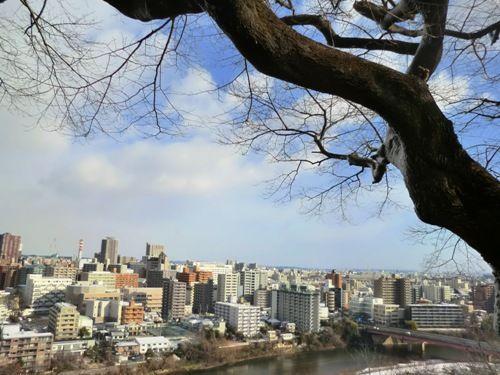 仙台愛宕神社からの眺め