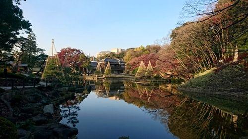 肥後細川庭園 - コピー