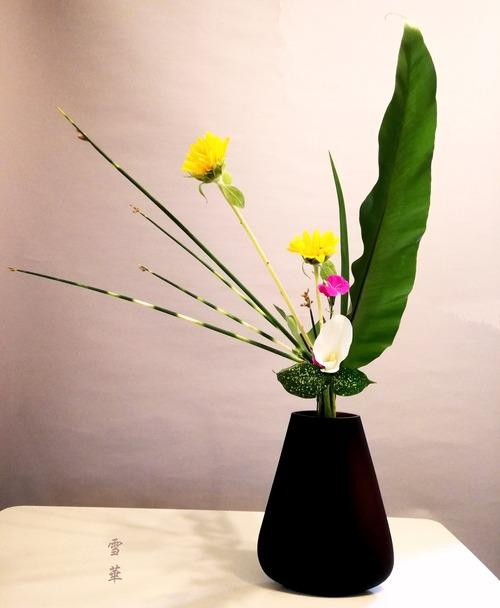 20200607新風体立花