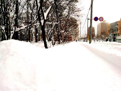 札幌上も下も真っ白