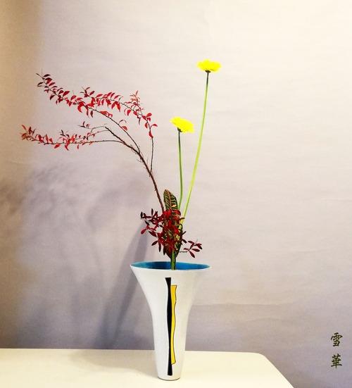 20201118生花新風体雪柳紅葉