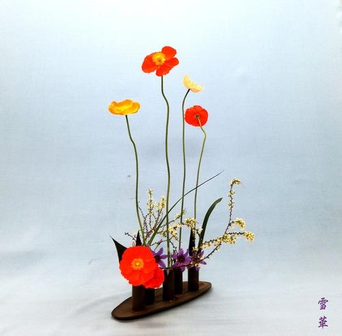 20200304上野花展試作用自由花ポピー