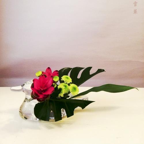 20200826クルクマ自由花
