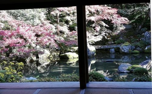 20201115蓮華寺庭園を座敷から眺める
