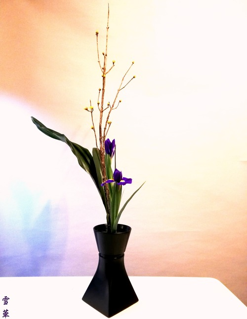 20200205山茱萸生花カリキュラム
