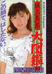 av1-dvi-010d-sakagamimakoto