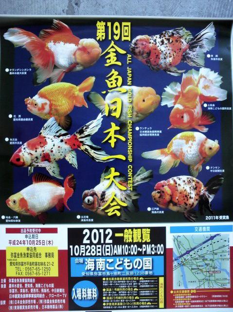 金魚日本一大会