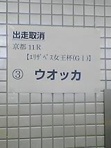 c621eef3.jpg