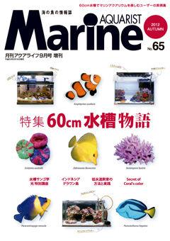 MA65-web
