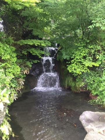 20190616_信しげの滝