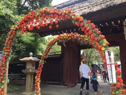 20180722_ほおづき門