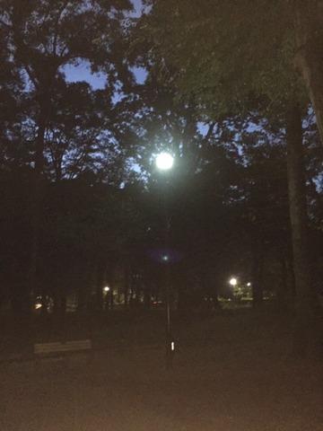 20180922‗井の頭夜