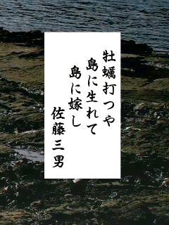 01月17日 今日の俳句 牡蠣① : 蝉...