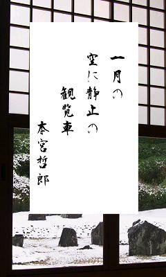 01月08日 今日の俳句 一月② : 蝉海(semiumi)の写真俳句blog