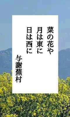 や 与謝 蕪村 菜の花