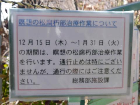 meisounomatsu06