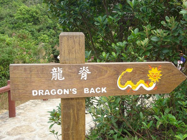Dragons_back