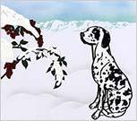 ダルと雪のお正月