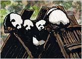 House of Pandas