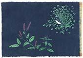 藍とオオルリ(蓼藍)