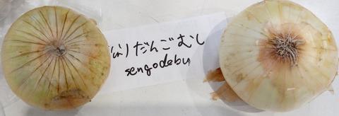 ニコニコ 野田 BBQ タマネギ12018y05m27d