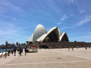オーストラリア11