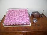RIN薔薇箱