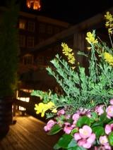 夜テラス花