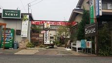 インスタ・FB・Blog・HP用 写真 (5)