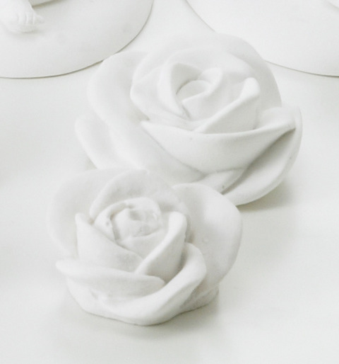 new 136910_rose