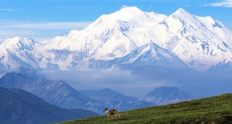 Vườn quốc gia & khu bảo tồn Denali, Alaska