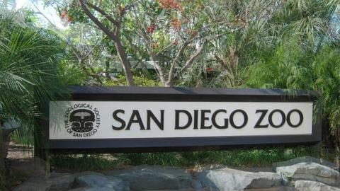 San-Diego-Zoo-0403