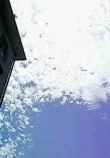 012b6413.jpg