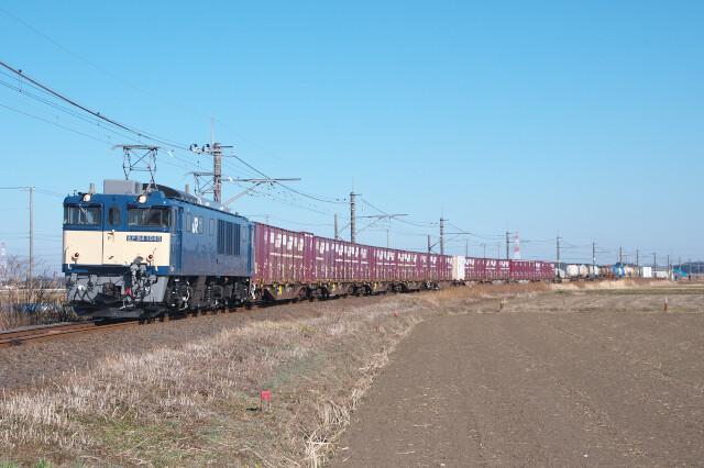 DSC_9646