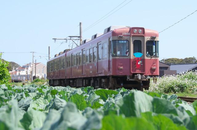銚子電鉄2000形20200429犬吠-外川6