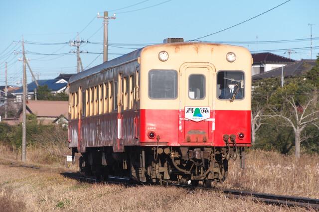DSC_8258