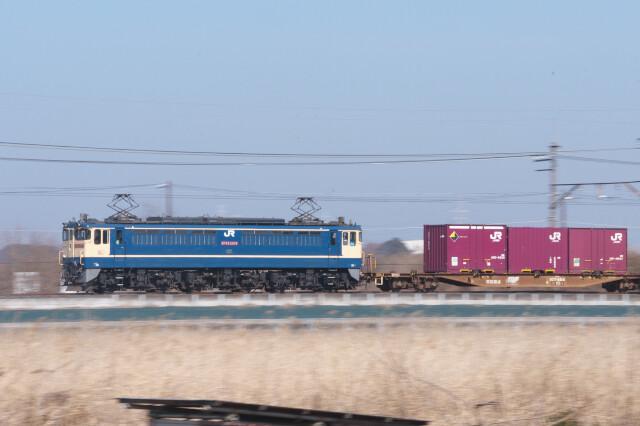 DSC_9906