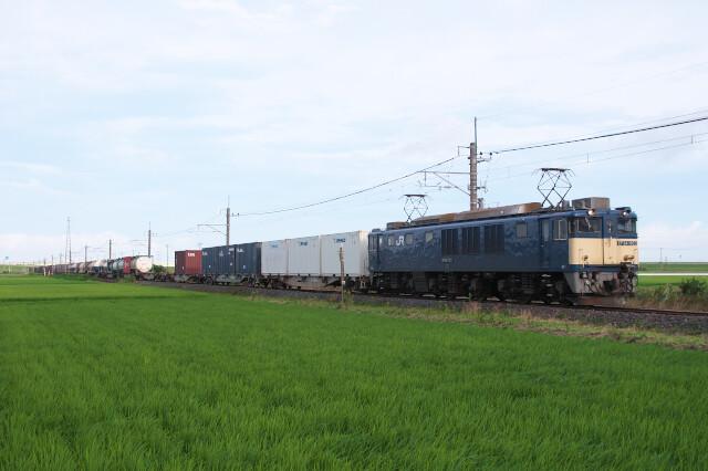 DSC_8940